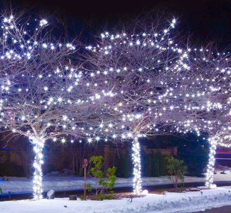 christmas light installers in denver